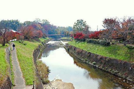 秋の竜田川の写真素材 [FYI03128975]