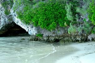透明感のあるウヴェア島のビーチ近くにある自然植生のある小さな洞窟の写真素材 [FYI03129231]