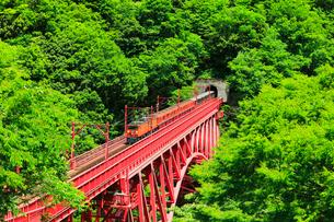 黒部峡谷鉄道トロッコ電車の写真素材 [FYI03129486]