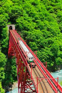 新緑の黒部峡谷鉄道トロッコ電車の写真素材 [FYI03129487]