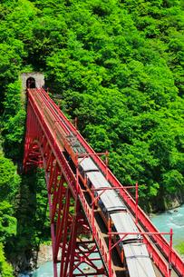 新緑の黒部峡谷鉄道トロッコ電車の写真素材 [FYI03129488]