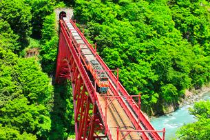 新緑の黒部峡谷鉄道トロッコ電車の写真素材 [FYI03129489]