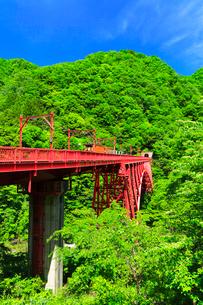新緑の黒部峡谷鉄道トロッコ電車と青空の写真素材 [FYI03129491]