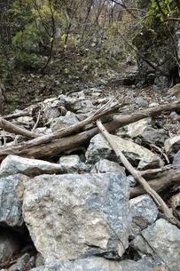 山崩れの写真素材 [FYI03129601]