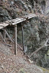 難路の古橋の写真素材 [FYI03129611]