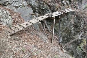 難路の古橋の写真素材 [FYI03129612]