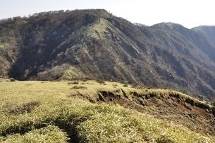不動ノ峰より日本百名山の丹沢山の写真素材 [FYI03129673]