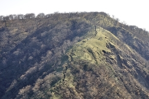 不動ノ峰より日本百名山の丹沢山の写真素材 [FYI03129677]