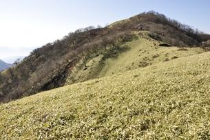 笹原の不動ノ峰の写真素材 [FYI03129678]