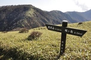 丹沢山への道標の写真素材 [FYI03129699]