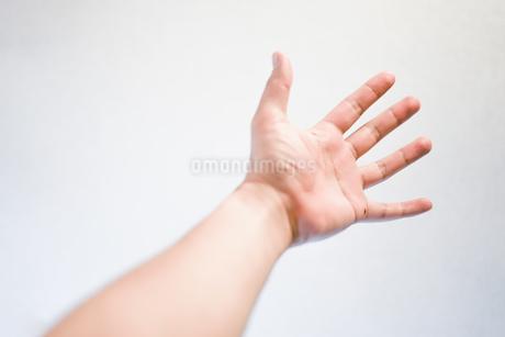 男性の手のイメージの写真素材 [FYI03129774]