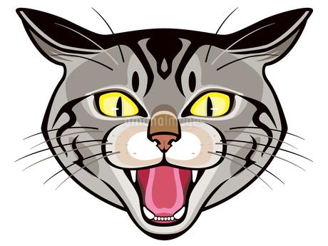 威嚇する猫のイラスト素材 [FYI03129781]