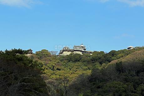 堀之内からの松山城の写真素材 [FYI03129886]