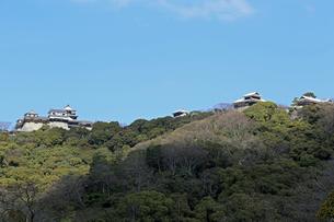 堀之内からの松山城の写真素材 [FYI03129888]