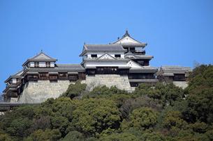 堀之内からの松山城の写真素材 [FYI03129890]
