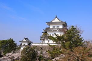 春の伊賀上野城の写真素材 [FYI03130099]