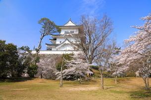 春の伊賀上野城の写真素材 [FYI03130110]