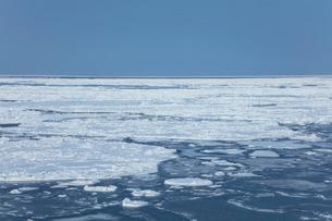 オホーツク海の流氷の写真素材 [FYI03130169]