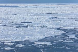 オホーツク海の流氷の写真素材 [FYI03130172]