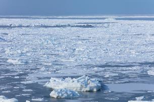 オホーツク海の流氷の写真素材 [FYI03130174]
