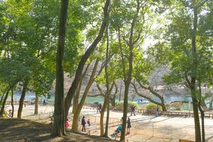 午後の井の頭公園で遊ぶ人々の写真素材 [FYI03130369]