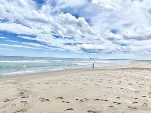 夏の海岸2の写真素材 [FYI03130896]
