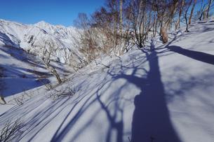 冬の八方尾根から白馬三山を眺めるの写真素材 [FYI03130945]