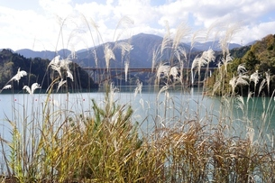 ススキと丹沢と宮ヶ瀬湖の写真素材 [FYI03131131]