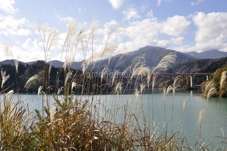 ススキと丹沢と宮ヶ瀬湖の写真素材 [FYI03131132]