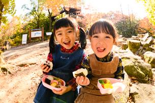 秋の公園でおにぎりを食べる子供の写真素材 [FYI03131345]