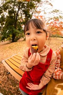 秋の公園で焼き芋を食べる子供の写真素材 [FYI03131385]