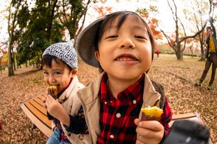 秋の公園で焼き芋を食べる子供の写真素材 [FYI03131393]