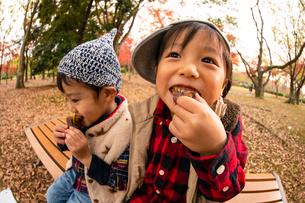秋の公園で焼き芋を食べる子供の写真素材 [FYI03131396]