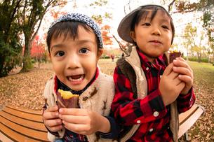 秋の公園で焼き芋を食べる子供の写真素材 [FYI03131398]