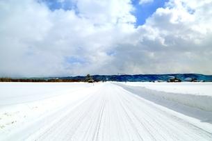 富良野 まっすぐな雪道の写真素材 [FYI03131809]