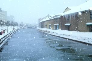 降雪の小樽運河の写真素材 [FYI03131856]