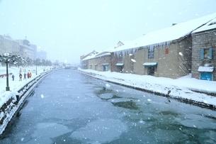 降雪の小樽運河の写真素材 [FYI03131857]