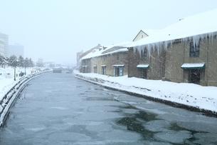降雪の小樽運河の写真素材 [FYI03131861]