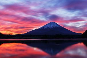 赤焼けする冬の富士山を精進湖から望むの写真素材 [FYI03132022]