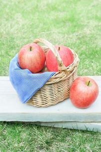 バスケットに入った複数のりんごの写真素材 [FYI03132071]