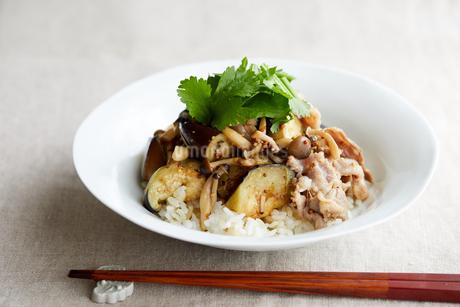 夏野菜と豚肉のマスタード丼の写真素材 [FYI03132135]