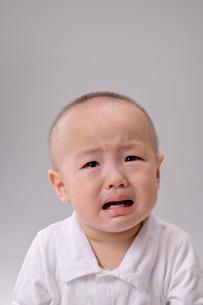 男の子の泣き顔の写真素材 [FYI03132273]