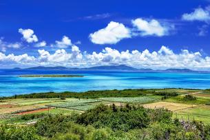 沖縄県・八重山諸島 小浜島の風景の写真素材 [FYI03132391]