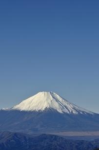 丹沢 丹沢山からの富士山の写真素材 [FYI03132419]