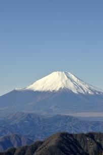 丹沢 丹沢山からの富士山の写真素材 [FYI03132420]