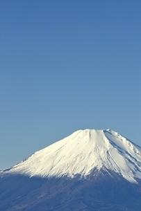 丹沢 丹沢山からの富士山の写真素材 [FYI03132426]