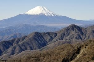丹沢 丹沢山からの富士山の写真素材 [FYI03132441]