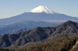 丹沢山地 丹沢山よりの富士山の写真素材 [FYI03132442]