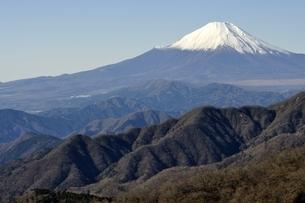 丹沢山地 丹沢山よりの富士山の写真素材 [FYI03132443]