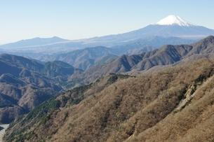 丹沢 丹沢山からの愛鷹山と富士山の写真素材 [FYI03132444]